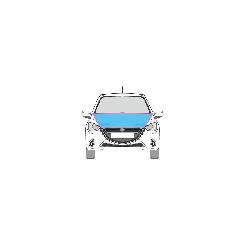 PKW Fahrzeugbeschriftung auf der Motorhaube